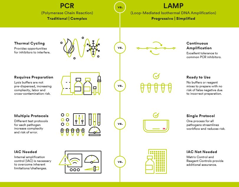 LAMP-VS-PCR-GRAPHIC-PATHOGEN-TESTING-SOLUTIONS-3M-FOOD-SAFETY